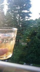 梅酒のソーダワリ