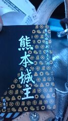 熊本城主院